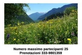 2018/07/20 A passeggio con l'Erbolaro Mauro Vaglio