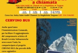 2020/03/15 SKI BUS SHUTTLE SERVICE BY CALL