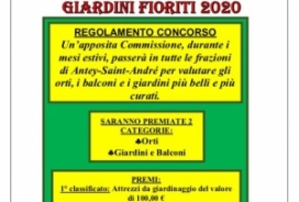 2020/08/20 COMPETITION OF VEGETABLES, BALCONIES AND FLOWERED GIADINI 2020